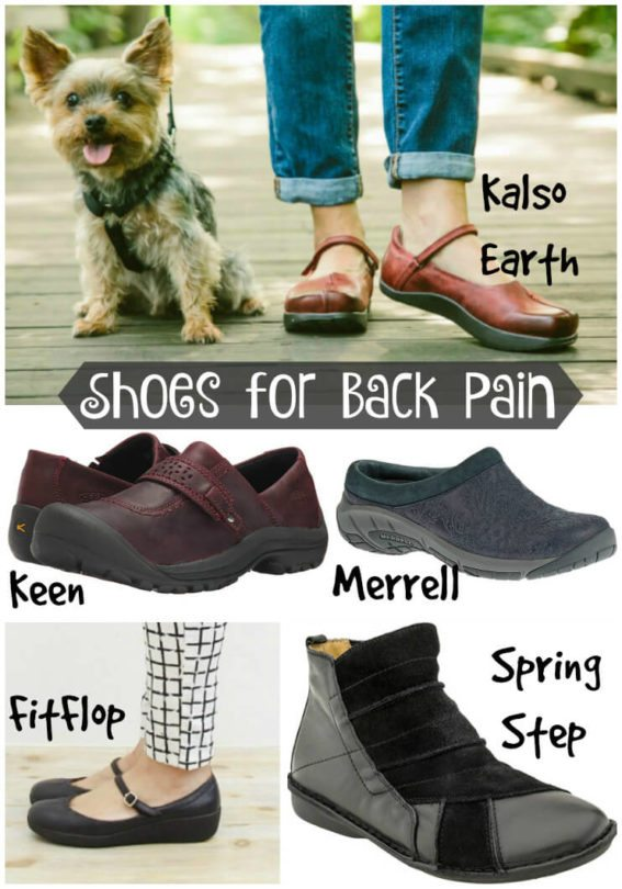 Barking Dog Shoes Sneakers