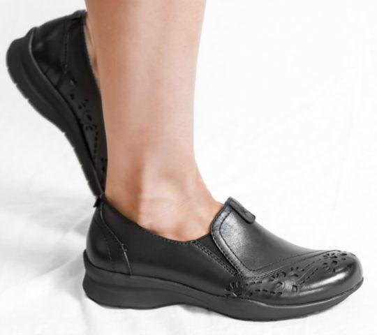 Barking Dog Shoe Blog