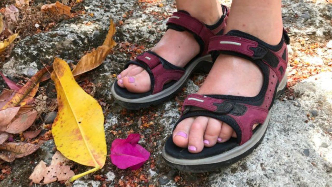 Ecco Yucatan Sandal: Comfortably Hike